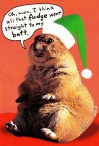 Christmas Marmot